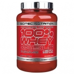 100% Whey Protein Professional LS-2350гр