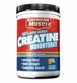 AM Creatine Monohydrate-500гр