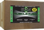 Muscle Gauge Nutrition Muscle Mass 4500гр
