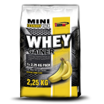 Vision Whey Gainer