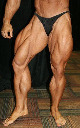 Мышцы ног- особенности тренировки Тренинг